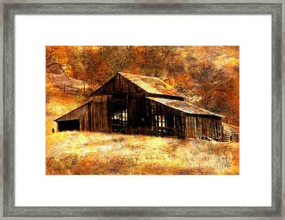 Fall In Country Framed Print by Irina Hays