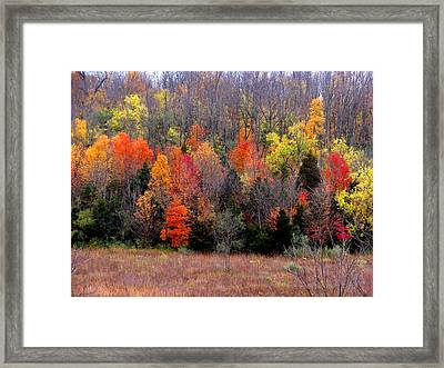 Framed Print featuring the photograph Fall In Dayton Ohio by Eric Switzer