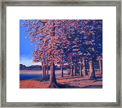 Fall In East Texas Framed Print by Suzanne Theis