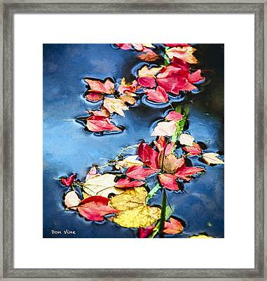 Fall  In Leaves Framed Print