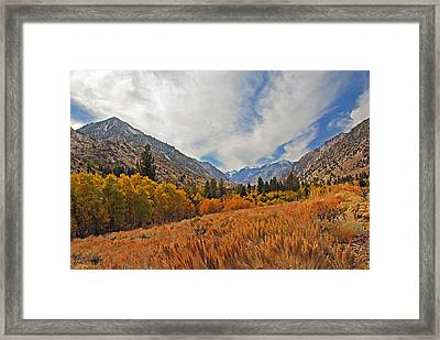Fall In Lundy Canyon Framed Print by Lynn Bauer