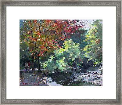 Fall In Mississauga Park Framed Print by Ylli Haruni
