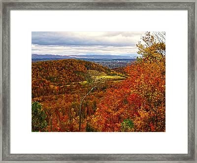 Fall In The Air Framed Print