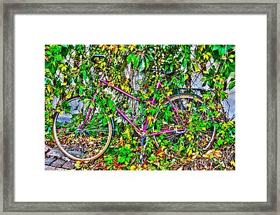 Fall In The City I Framed Print by Kim Lessel