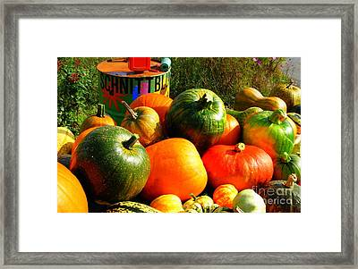 Fall In The Countryside - Schnittblumen Framed Print