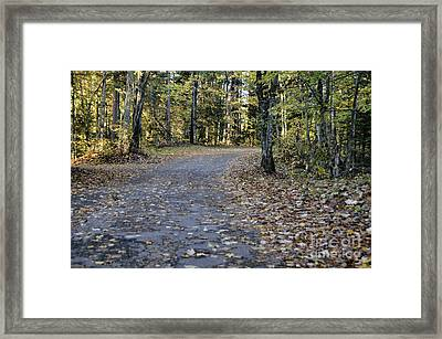 Fall In The North Woods Framed Print by Birgit Tyrrell