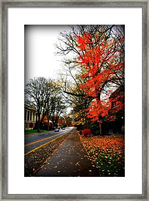 Fall In The Northwest Framed Print