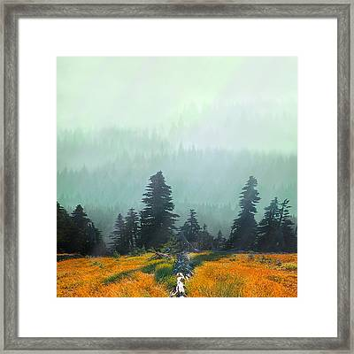 Fall In The Northwest Framed Print by Jeff Burgess