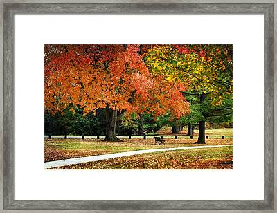 Fall In The Park Framed Print by Christina Rollo