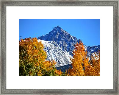Fall In The Rockies Framed Print by David Lee Thompson