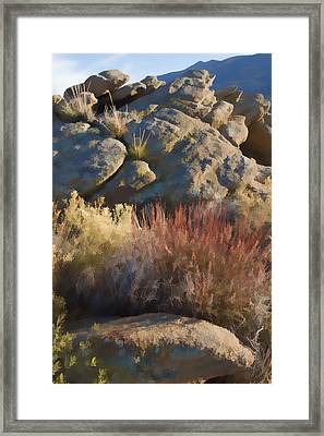 Fall In The Santa Rosas Framed Print
