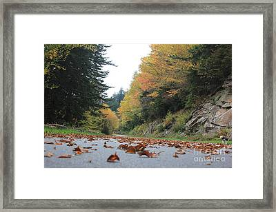 Fall In The Smokies Framed Print