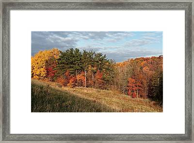 Fall In The Valley Framed Print by Daniel Behm