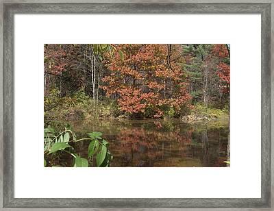Fall In Upsrate Ny Framed Print by Edward Kocienski