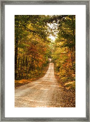 Fall Into Autumn Framed Print by Mary Timman