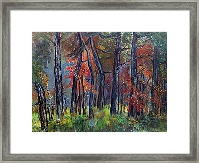 Fall Framed Print by Iya Carson