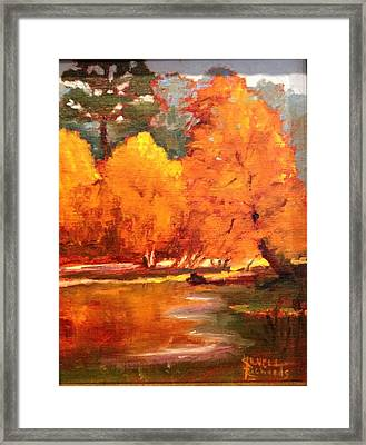 Fall  Framed Print by Jenell Richards