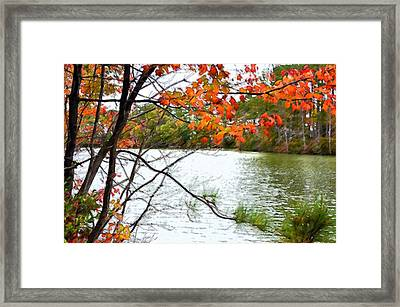Fall Landscape 1 Framed Print by Lanjee Chee