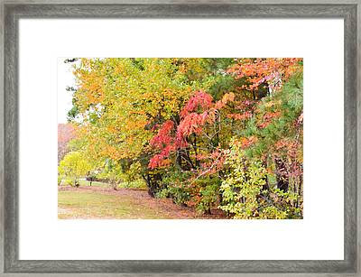 Fall Landscape 3 Framed Print by Lanjee Chee