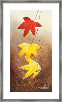 Fall Leaves 2 Framed Print by Teresa Wadman