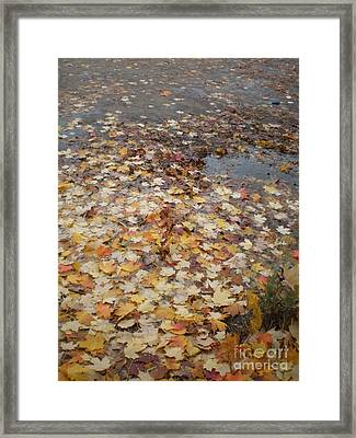 Fall Leaves And Puddle Framed Print