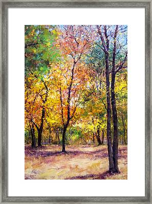 Fall Leaves At Indiana University Framed Print by Bill Inman