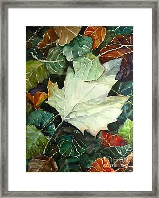 Fall Leaves Framed Print by Jennifer Apffel
