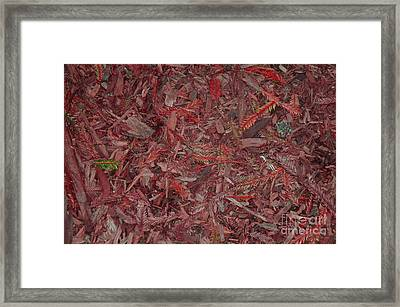 Framed Print featuring the photograph Fall Leaves by Mini Arora