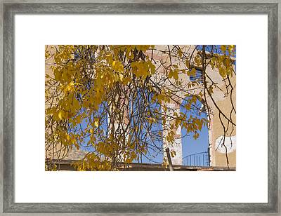 Fall Leaves On Open Windows Jerome Framed Print by Scott Campbell