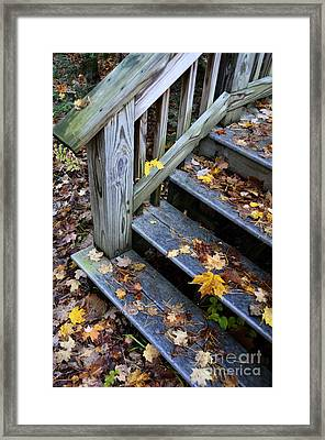 Fall Leaves On Steps Framed Print by Birgit Tyrrell