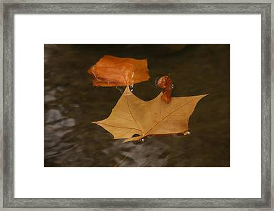 Fall Leaves On Water Framed Print