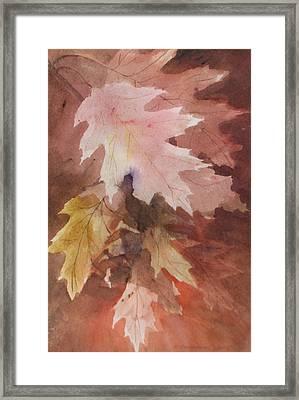 Fall Leaves Framed Print by Susan Crossman Buscho