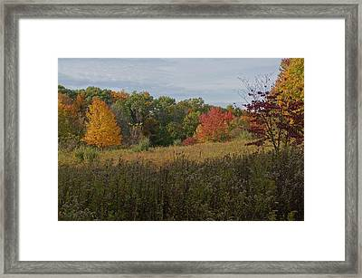 Fall Meadow Framed Print by Doug Hubbard