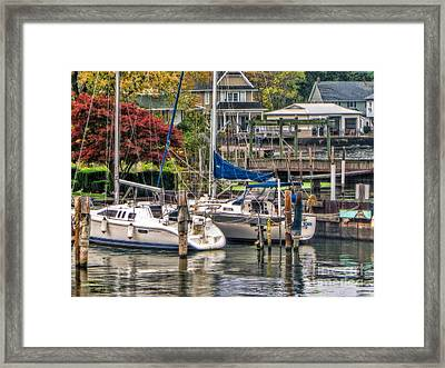 Fall Memory Framed Print by Tammy Espino