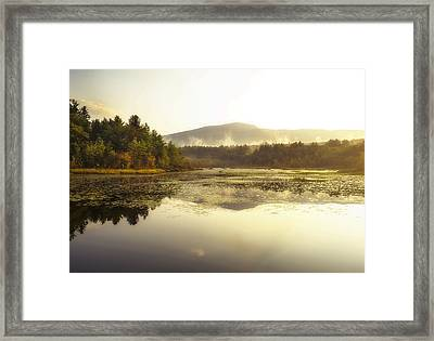 Fall Morning Framed Print by Gordon Ripley