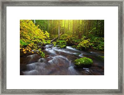 Fall Morning Hike Framed Print by Darren  White