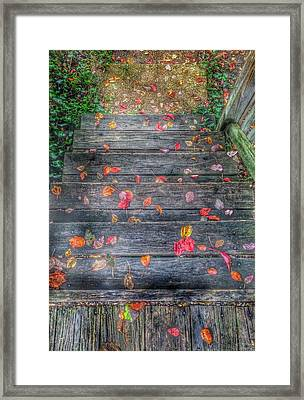 Fall Morning Framed Print by Marianna Mills