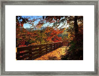 Fall Morning Walk Framed Print by Greg and Chrystal Mimbs