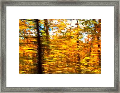 Fall Motion Framed Print by Michael Hubley