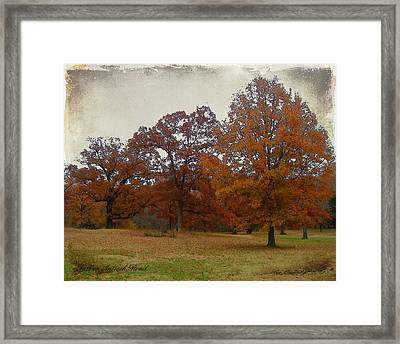 Fall On Antioch Road Framed Print
