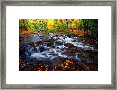Fall On Fountain Creek Framed Print