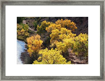 Framed Print featuring the photograph Fall On The Chama River by Roselynne Broussard