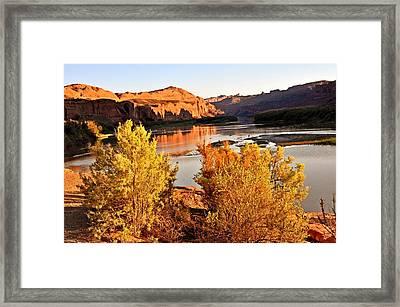 Fall On The Colorado Framed Print by Marty Koch