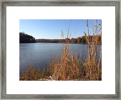 Fall On The Creek Framed Print