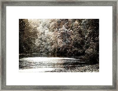 Fall On The Current Framed Print by Marty Koch