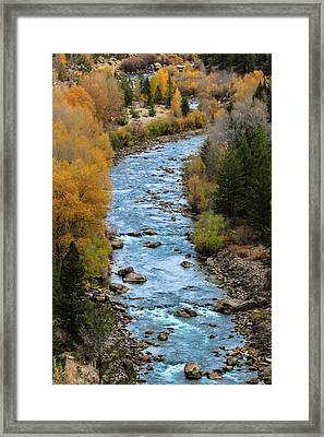 Fall On The Gros Ventre River Framed Print