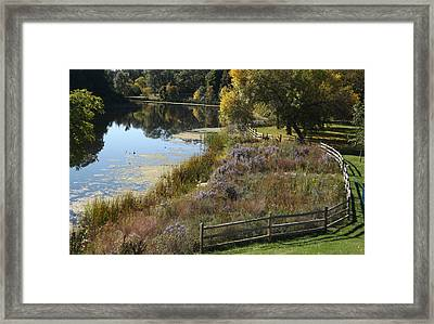 Fall On The Pond Framed Print
