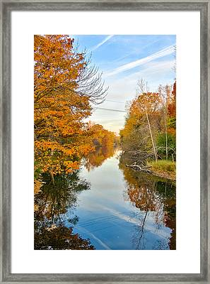 Framed Print featuring the photograph Fall On The Red Cedar  by Lars Lentz