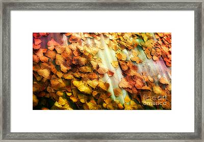 Fall On The Roof Framed Print by Bobbi Feasel