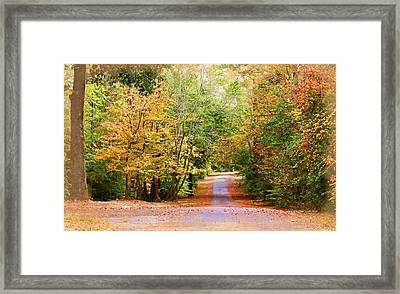Framed Print featuring the photograph Fall Pathway by Judy Vincent